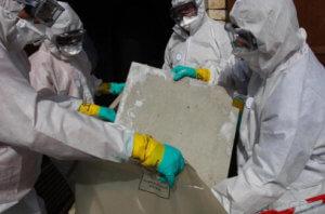 sanctuary asbestos